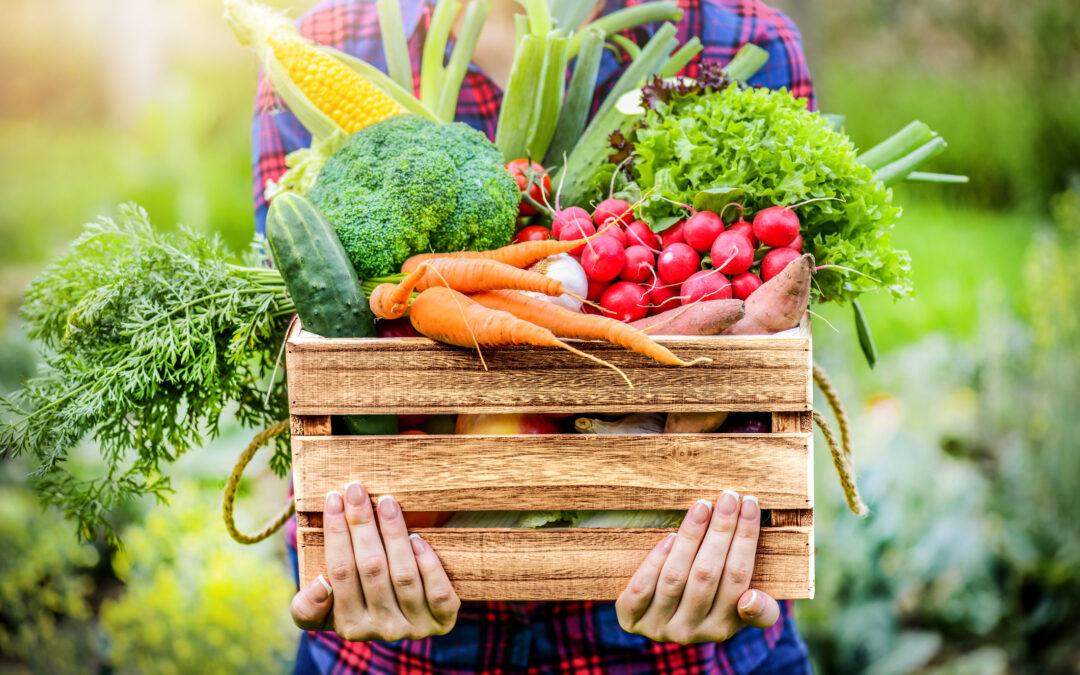 Farm Stand Vegetables